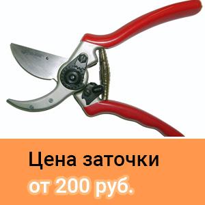 cena_zatochki_sekatorov